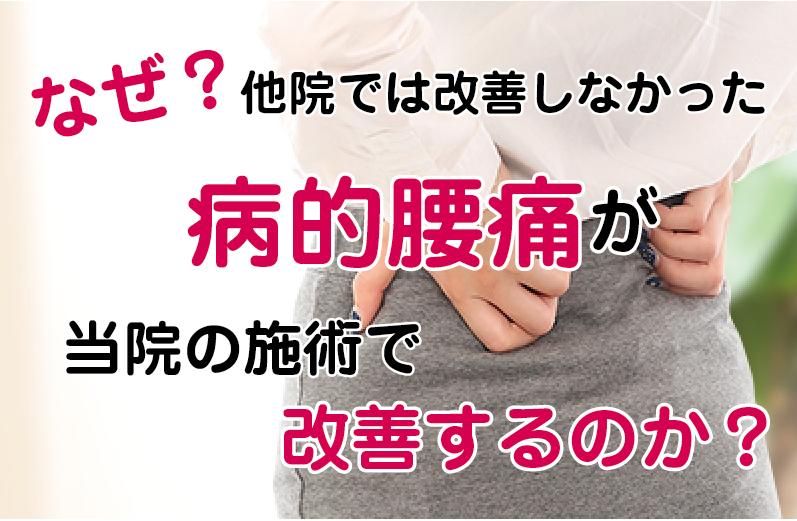 松江市の病的腰痛の専門店